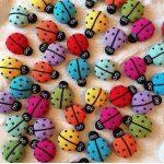 Renkli Uğur Böcekleri Modeli